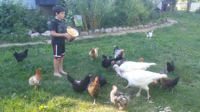 Jake hens